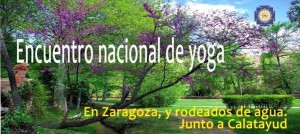 encuentroyoga